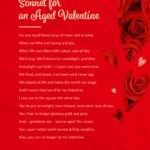 Sonnet for an Aged Valentine by Peter Schirmer
